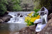 Dicks Creek Waterfall_113