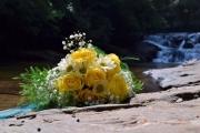 Dicks Creek Waterfall_096