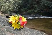 Dicks Creek Waterfall_103