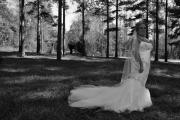 Waterfall Weddings_016